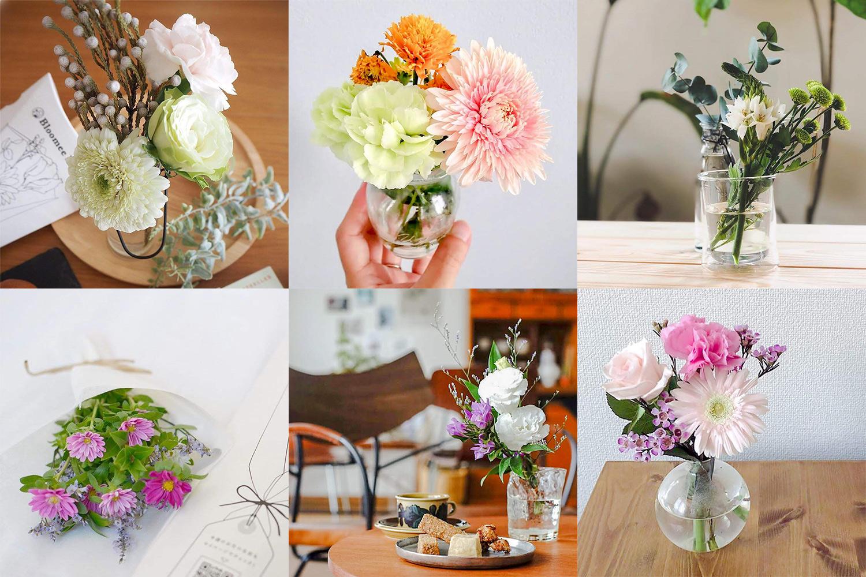 BloomeeLIFE(ブルーミーライフ)で届くお花の種類