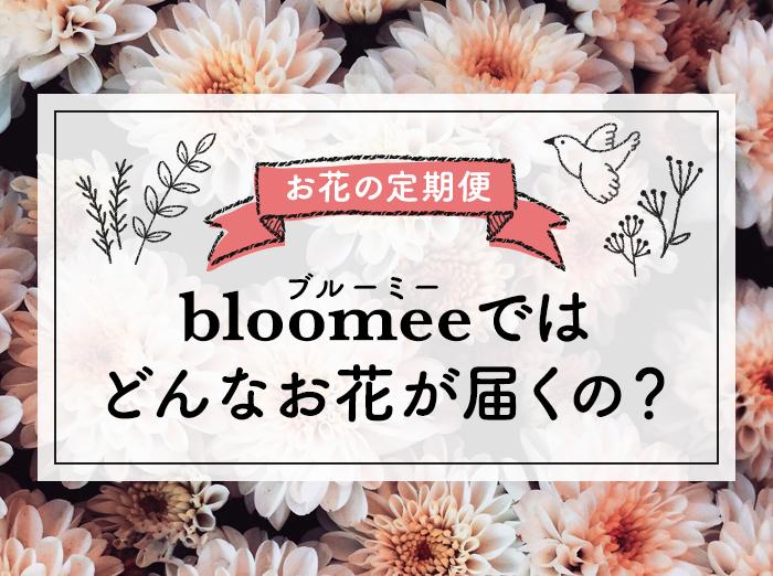 【本音レビュー】bloomee(ブルーミー)ではどんなお花が届くの?実際に利用した感想とメリット・デメリット