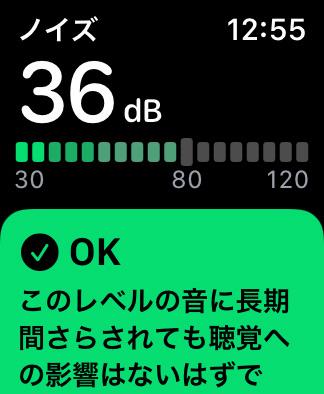 Apple Watch ノイズ機能